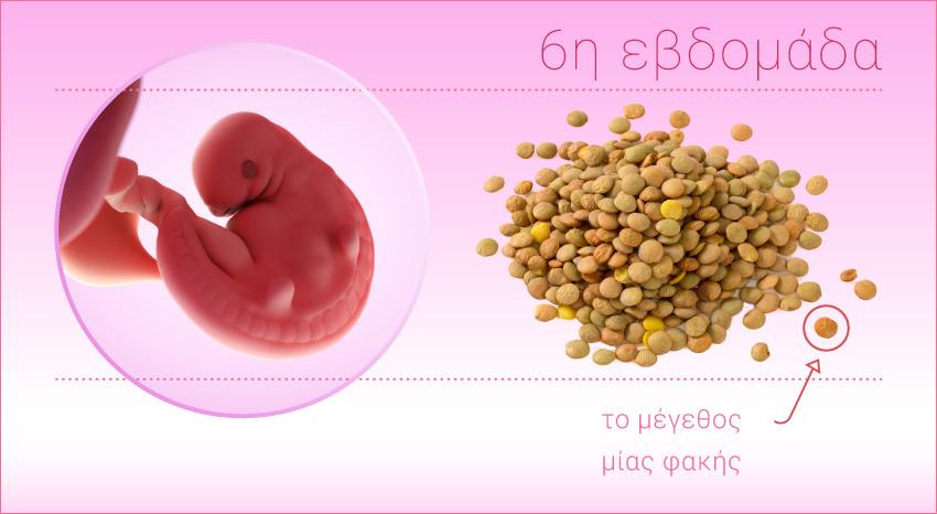 Ραντεβού τεστ εγκυμοσύνης